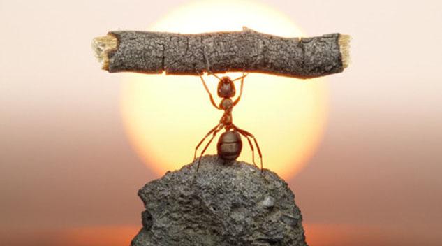 estrategia-para-o-sucesso